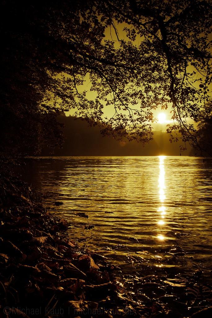 Goldener Oktober an der Fürwiggetalsperre. (Foto: Michael Kaub)