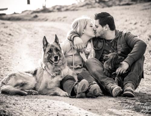 Fotospaziergang mit tierischer Begleitung
